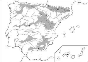 mapa-fc3adsico-mudo1